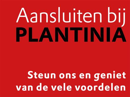 Lid-worden-Plantinia